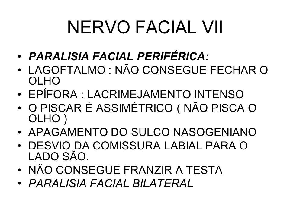 NERVO FACIAL VII PARALISIA FACIAL PERIFÉRICA: