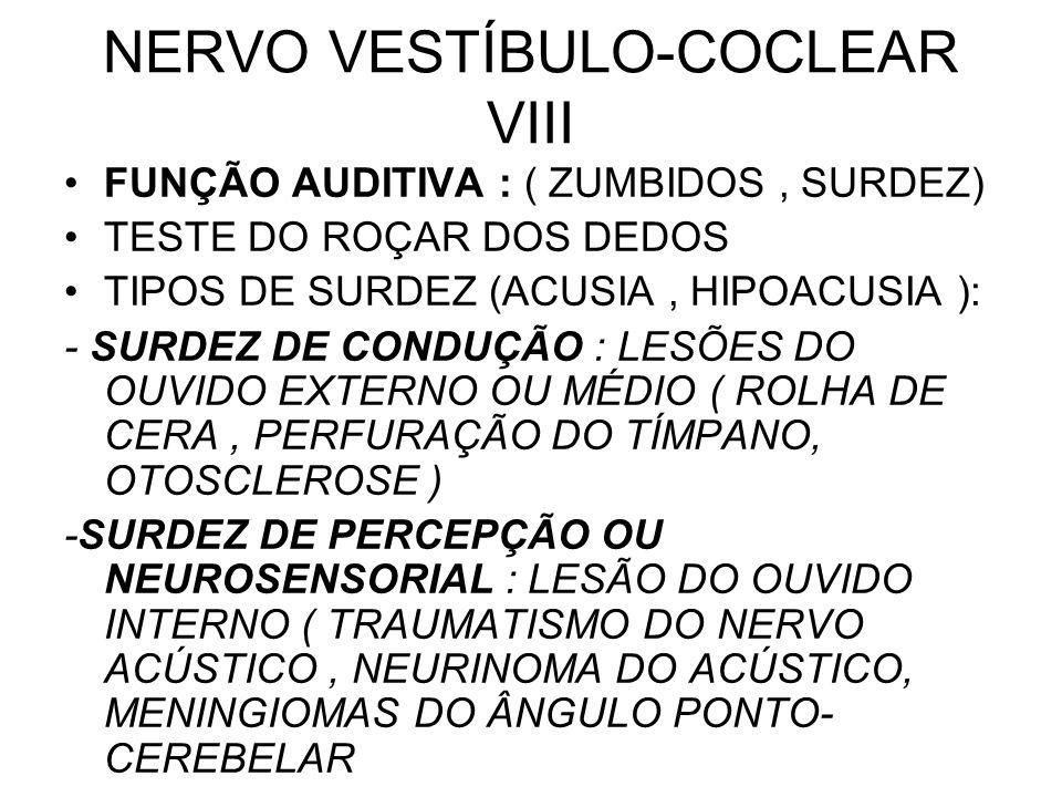 NERVO VESTÍBULO-COCLEAR VIII