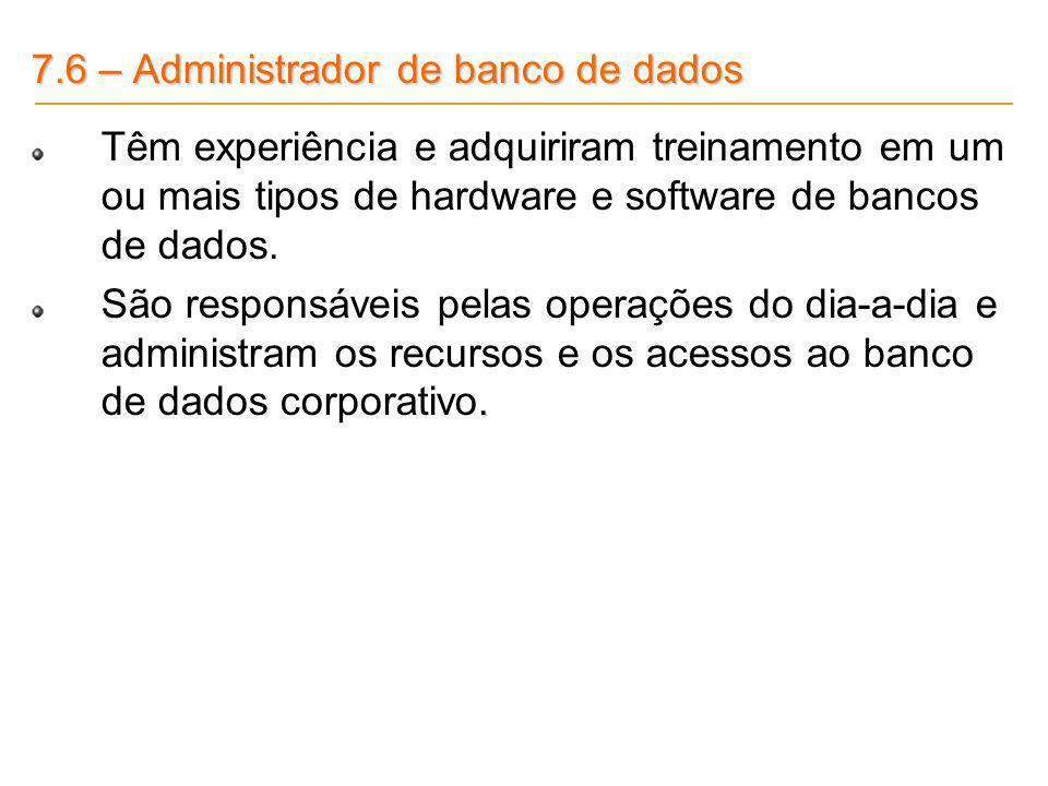7.6 – Administrador de banco de dados