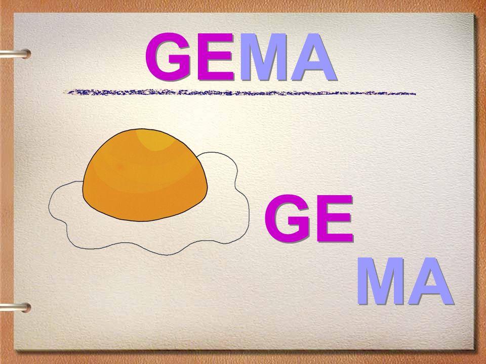 GEMA GE MA