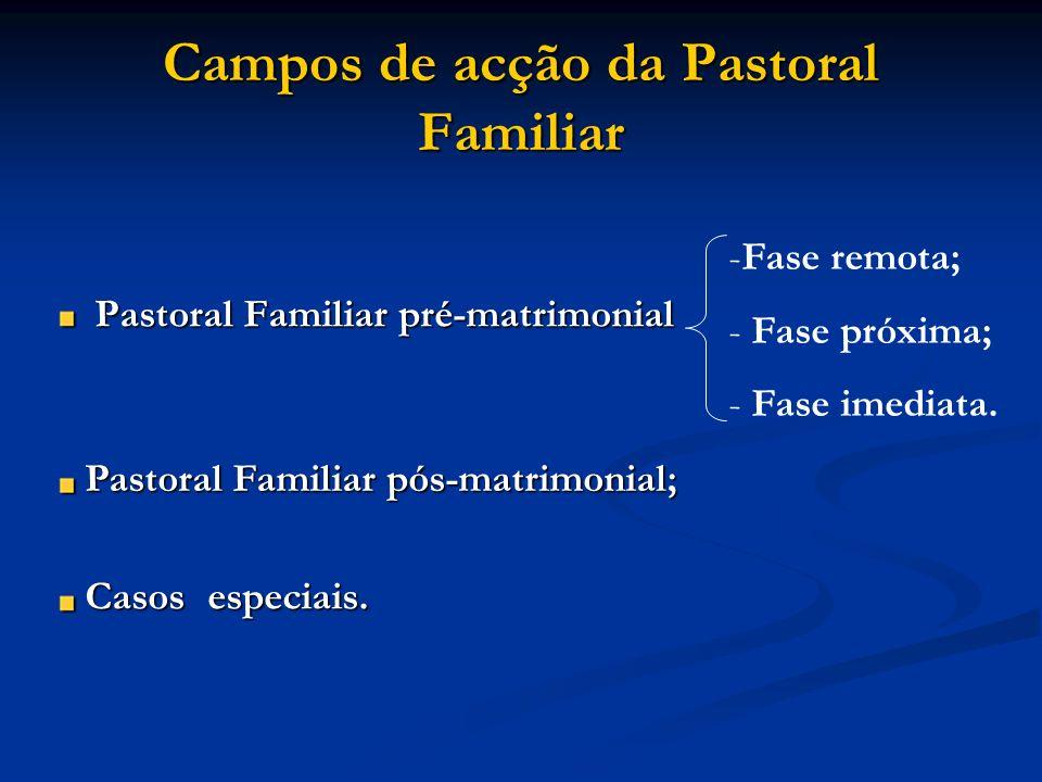 Campos de acção da Pastoral Familiar