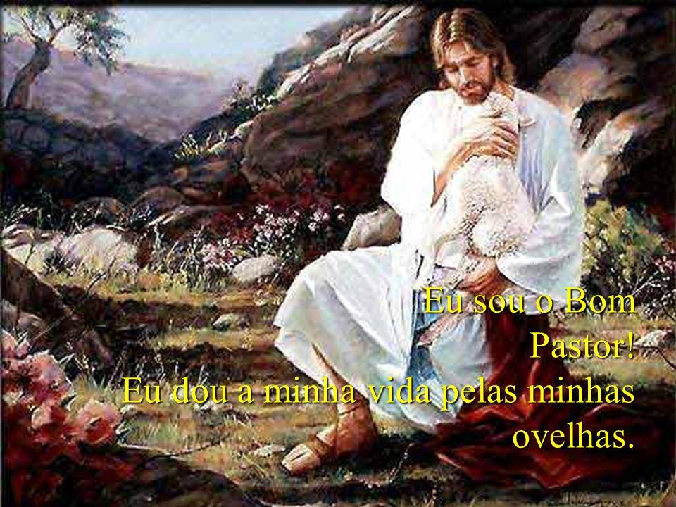 Eu sou o Bom Pastor! Eu dou a minha vida pelas minhas ovelhas.