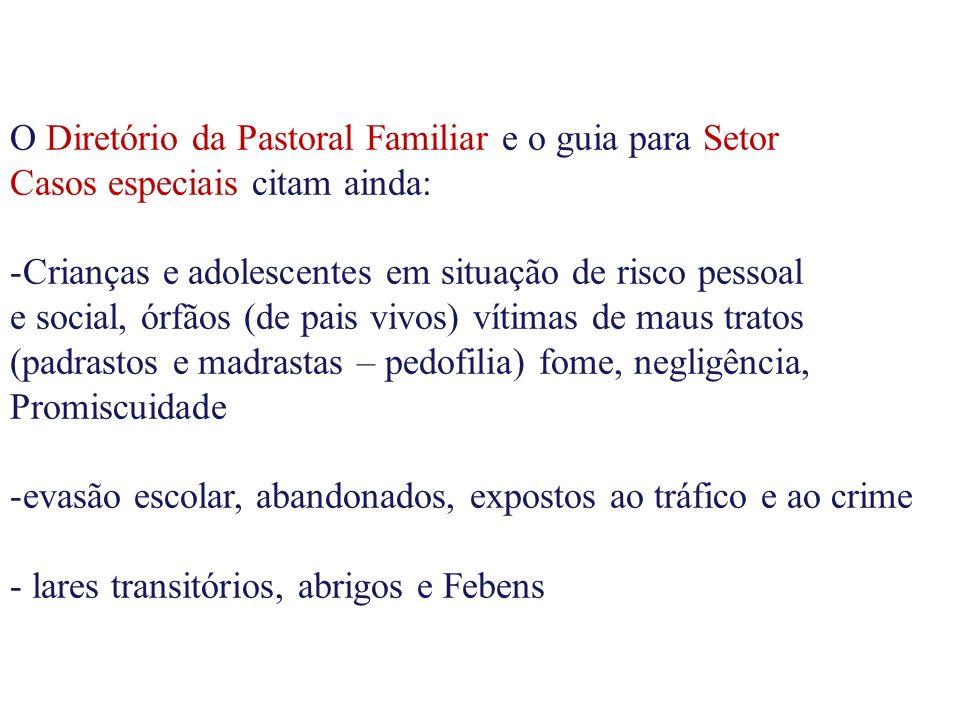 O Diretório da Pastoral Familiar e o guia para Setor