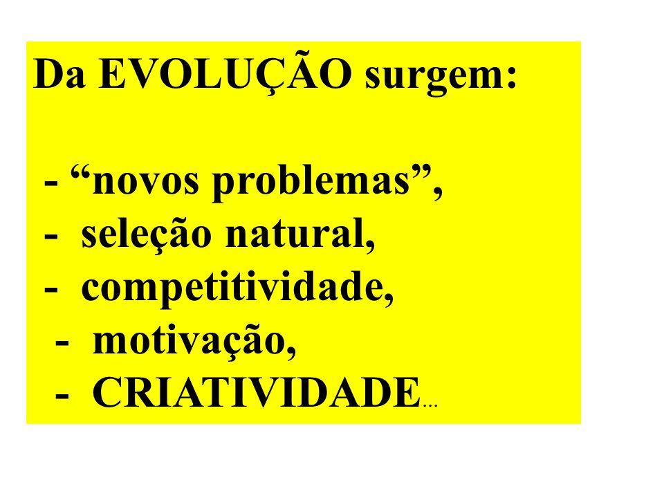 Da EVOLUÇÃO surgem: - novos problemas , - seleção natural,