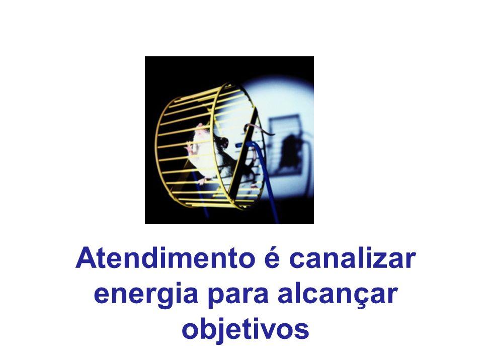 Atendimento é canalizar energia para alcançar objetivos