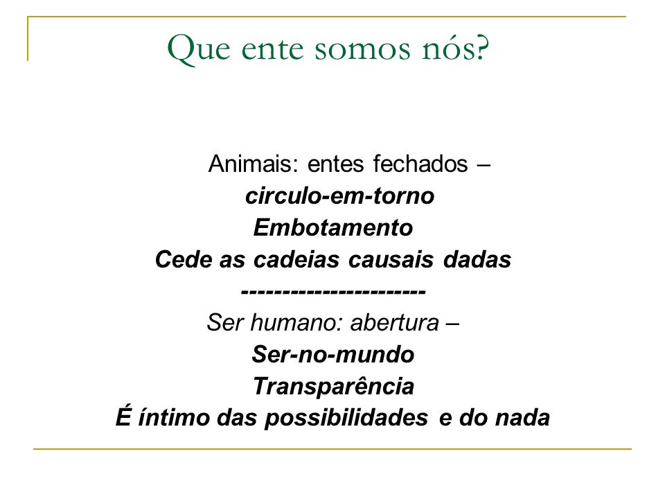 Que ente somos nós Animais: entes fechados – circulo-em-torno
