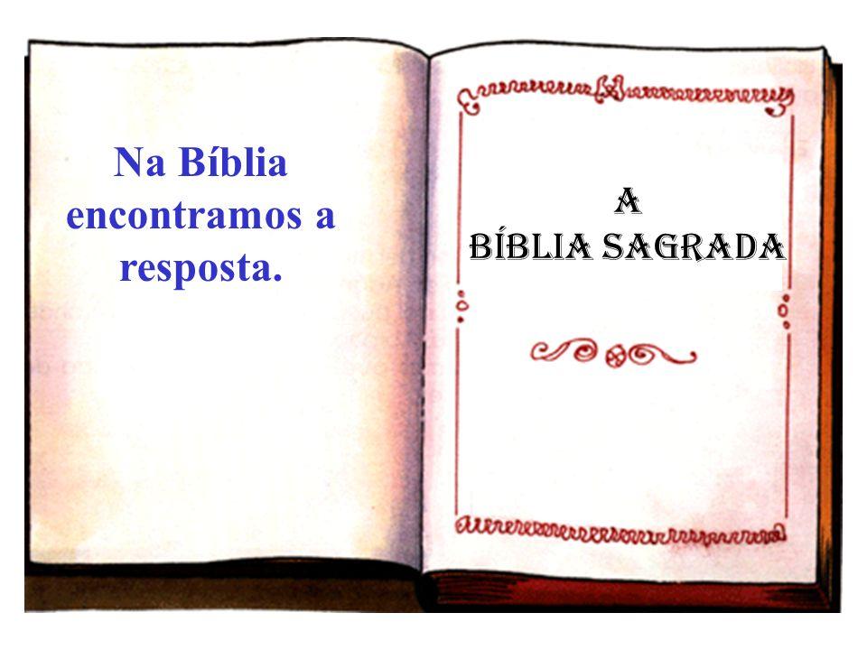 Na Bíblia encontramos a resposta.