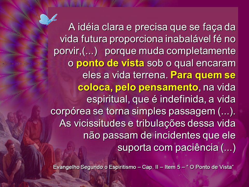 A idéia clara e precisa que se faça da vida futura proporciona inabalável fé no porvir,(...) porque muda completamente o ponto de vista sob o qual encaram eles a vida terrena. Para quem se coloca, pelo pensamento, na vida espiritual, que é indefinida, a vida corpórea se torna simples passagem (...). As vicissitudes e tribulações dessa vida não passam de incidentes que ele suporta com paciência (...)