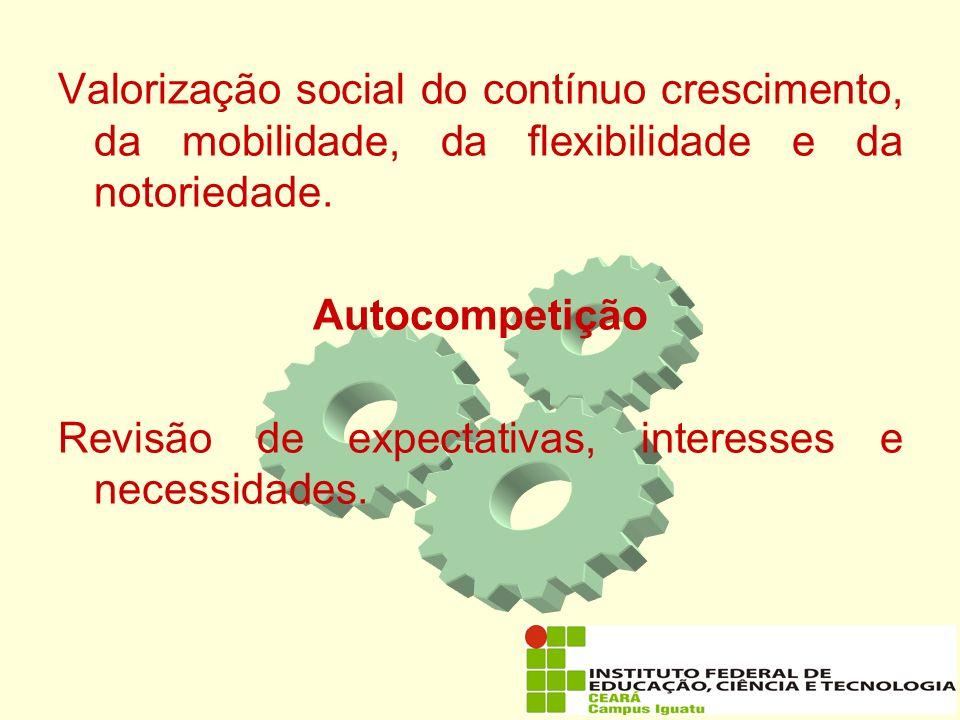Valorização social do contínuo crescimento, da mobilidade, da flexibilidade e da notoriedade.