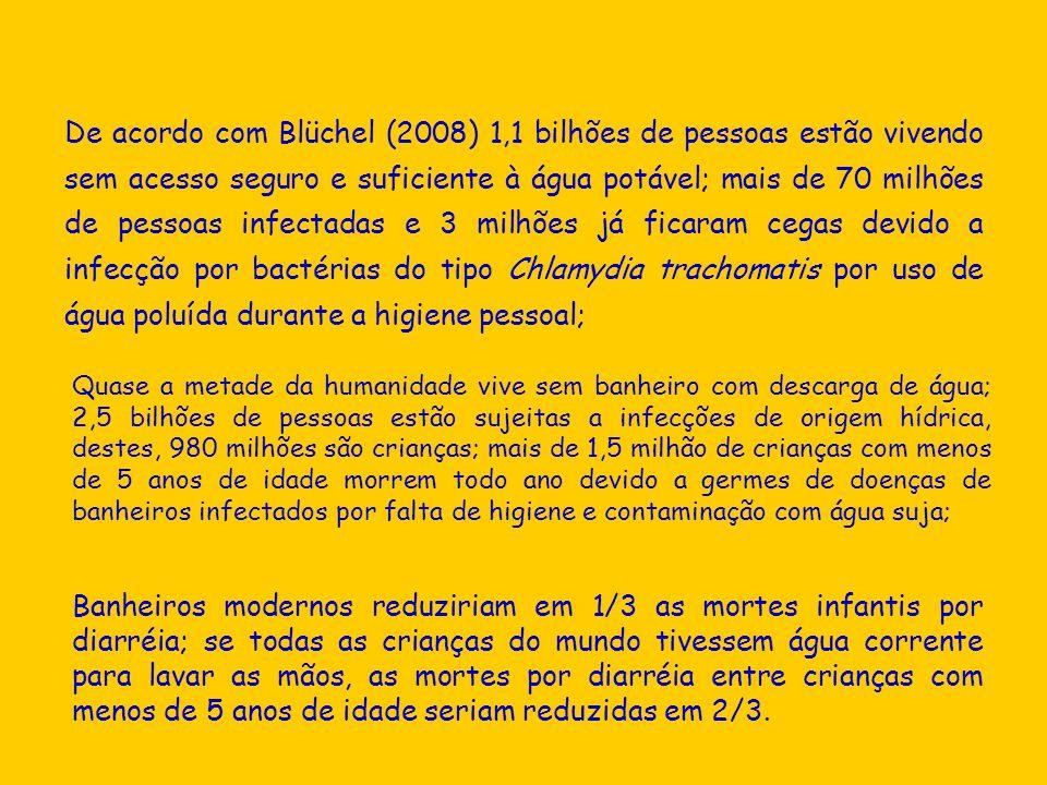 De acordo com Blüchel (2008) 1,1 bilhões de pessoas estão vivendo sem acesso seguro e suficiente à água potável; mais de 70 milhões de pessoas infectadas e 3 milhões já ficaram cegas devido a infecção por bactérias do tipo Chlamydia trachomatis por uso de água poluída durante a higiene pessoal;