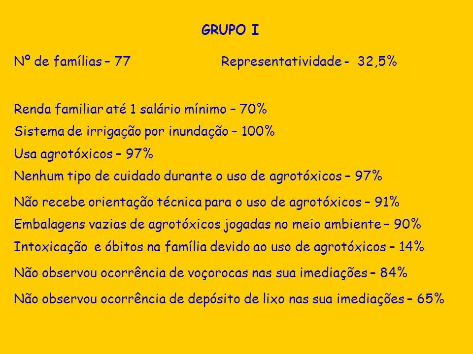 GRUPO I Nº de famílias – 77 Representatividade - 32,5% Renda familiar até 1 salário mínimo – 70%
