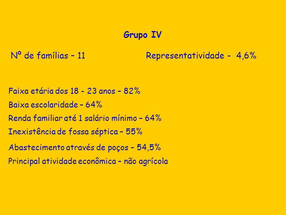 Nº de famílias – 11 Representatividade - 4,6%