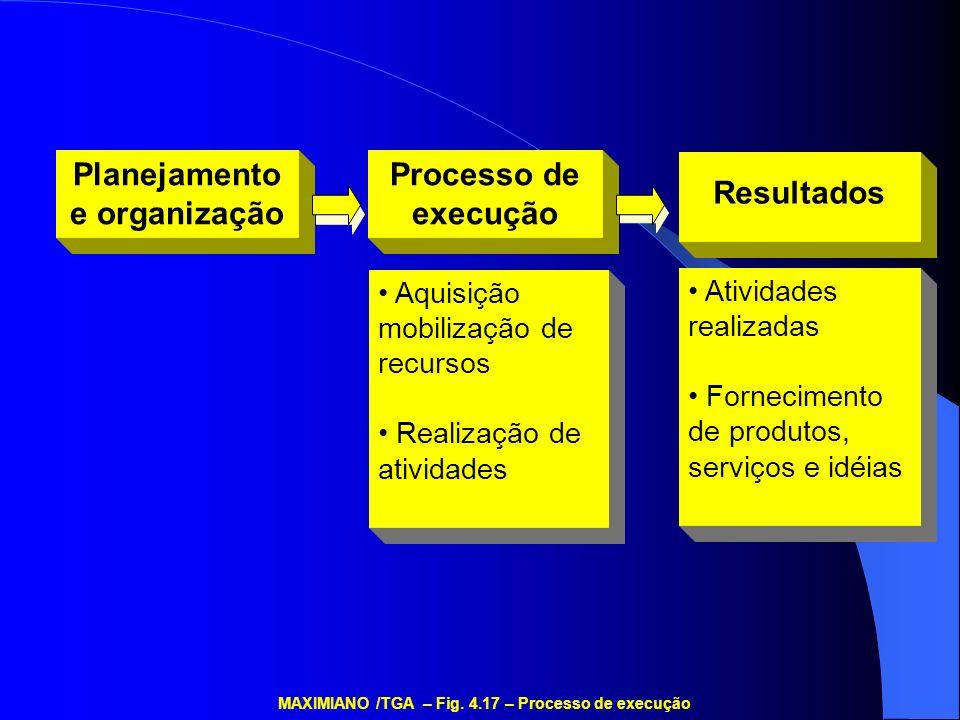 Planejamento e organização Processo de execução Resultados