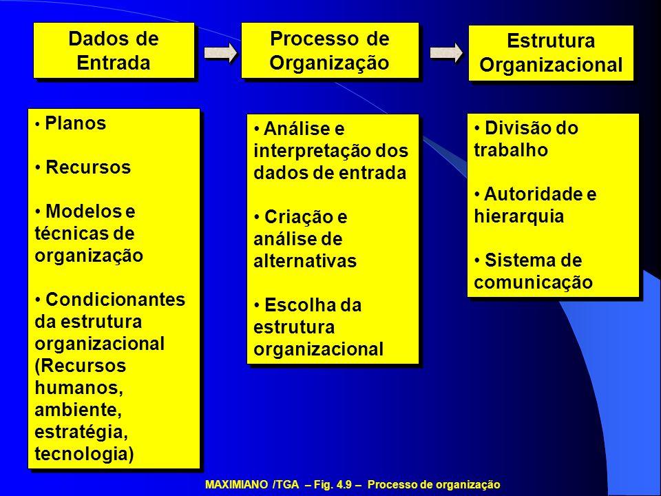 Dados de Entrada Processo de Organização Estrutura Organizacional