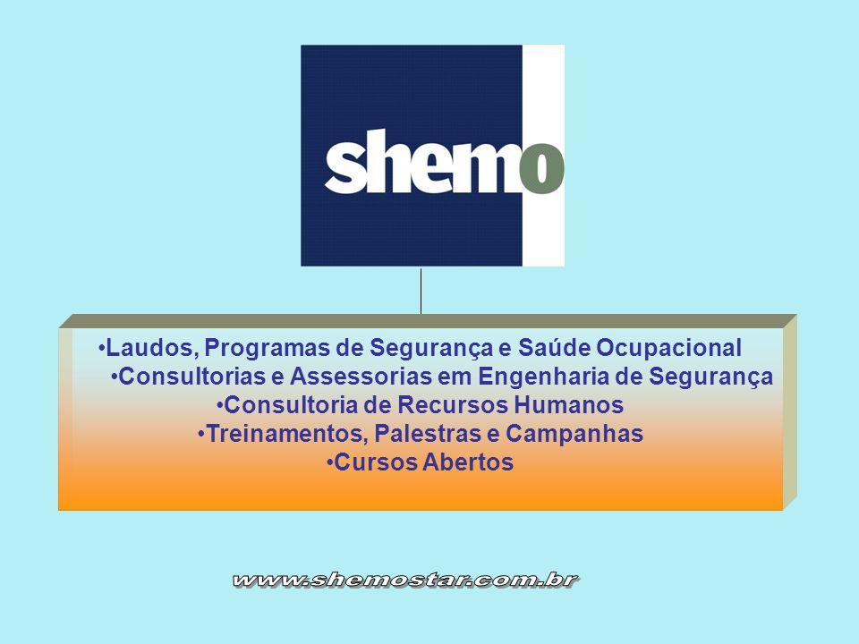 Laudos, Programas de Segurança e Saúde Ocupacional