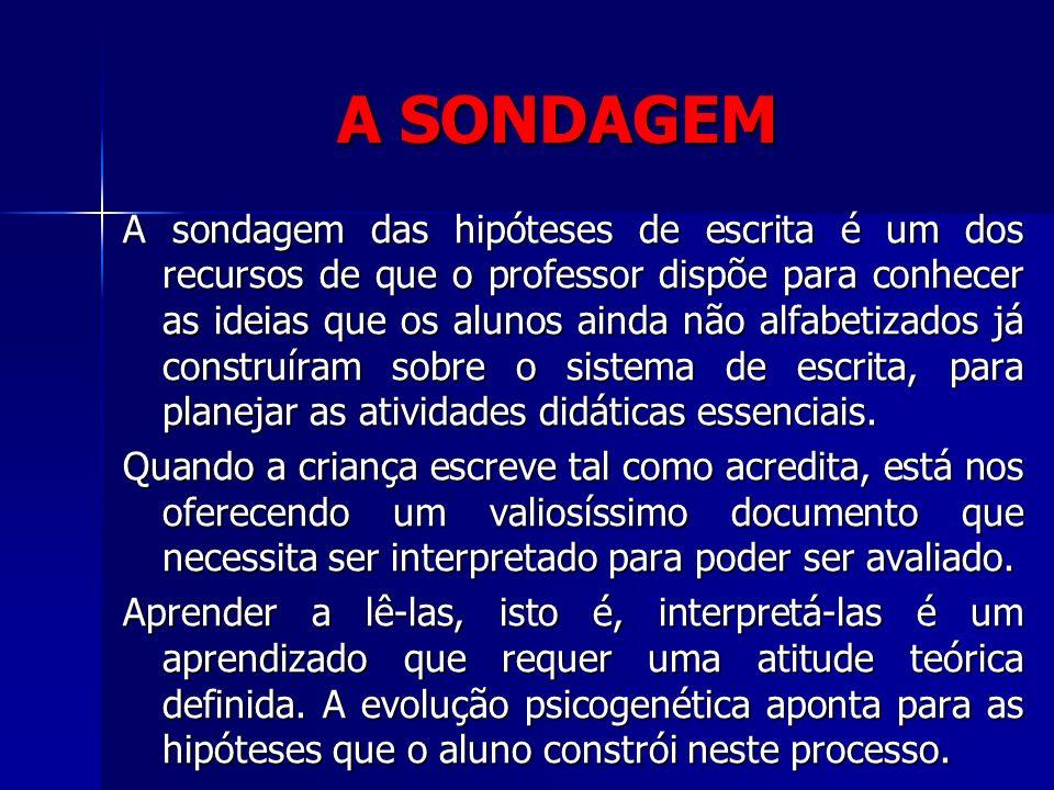A SONDAGEM