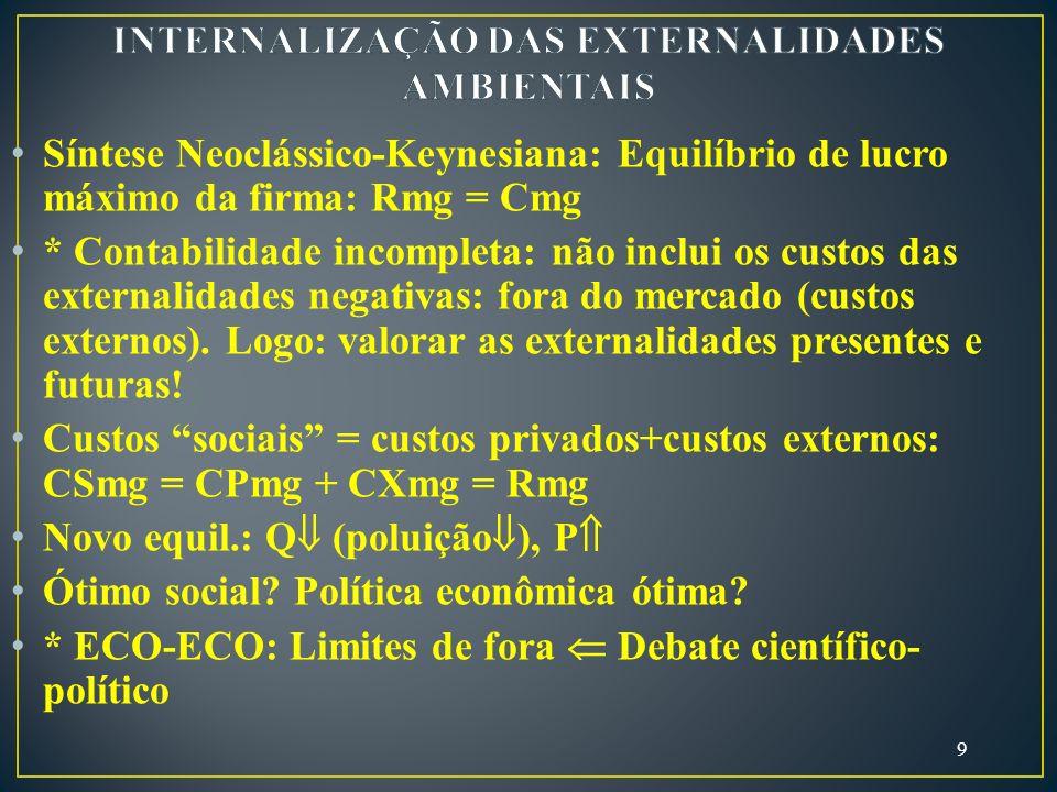 INTERNALIZAÇÃO DAS EXTERNALIDADES AMBIENTAIS