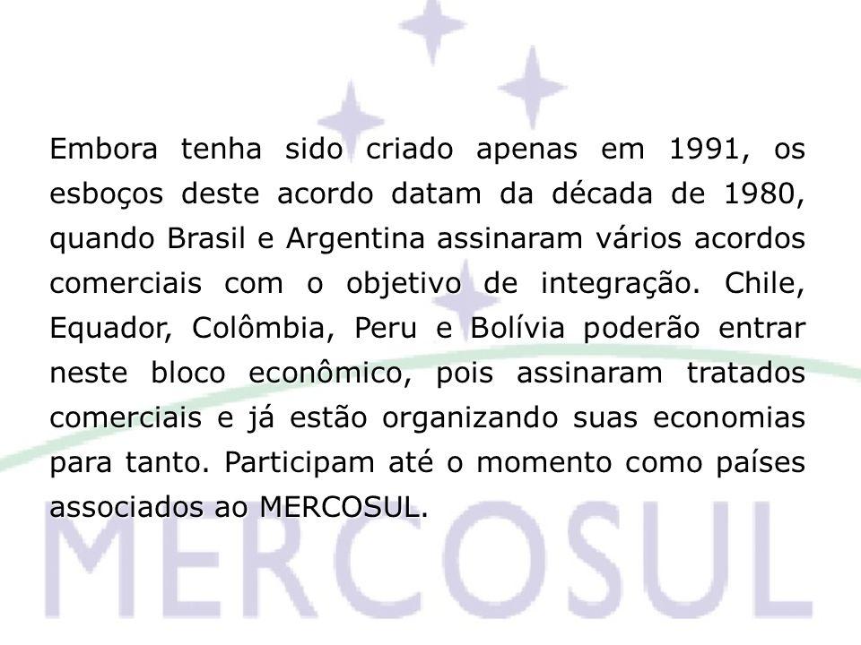 Embora tenha sido criado apenas em 1991, os esboços deste acordo datam da década de 1980, quando Brasil e Argentina assinaram vários acordos comerciais com o objetivo de integração.