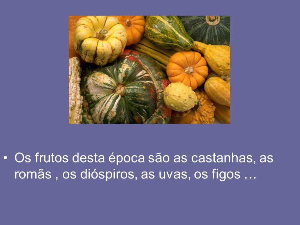 Os frutos desta época são as castanhas, as romãs , os dióspiros, as uvas, os figos …