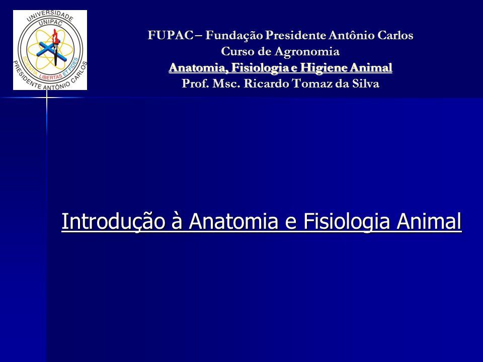 Introdução à Anatomia e Fisiologia Animal