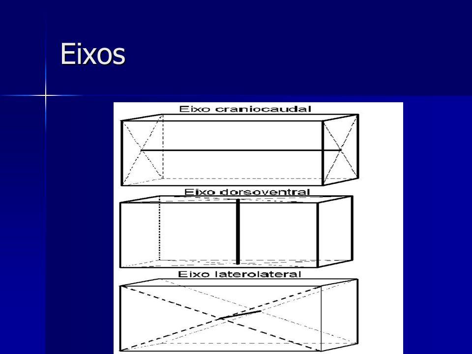 Eixos