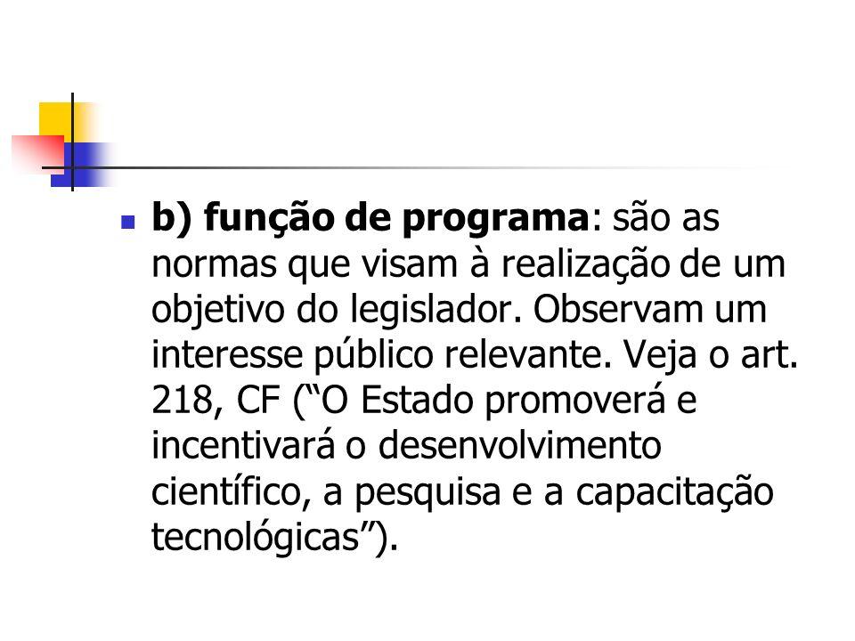 b) função de programa: são as normas que visam à realização de um objetivo do legislador.