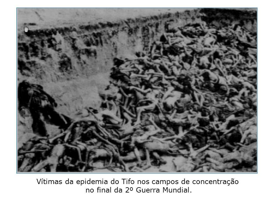 Vítimas da epidemia do Tifo nos campos de concentração