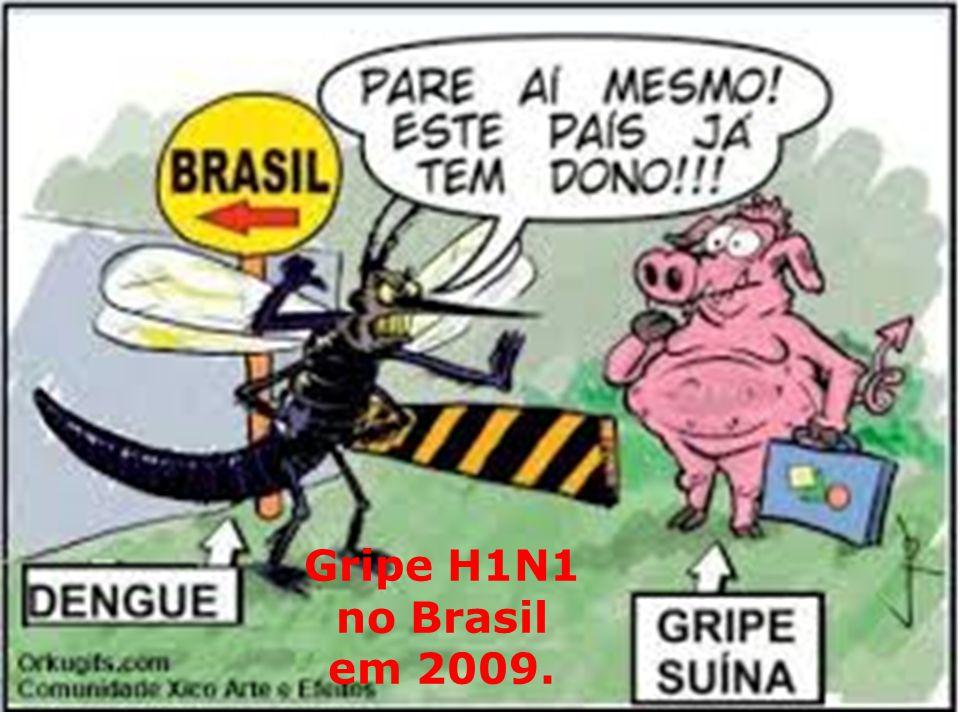 Gripe H1N1 no Brasil em 2009.