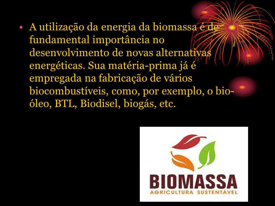 A utilização da energia da biomassa é de fundamental importância no desenvolvimento de novas alternativas energéticas.