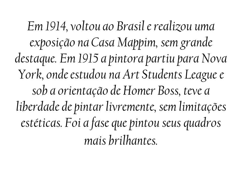 Em 1914, voltou ao Brasil e realizou uma exposição na Casa Mappim, sem grande destaque.