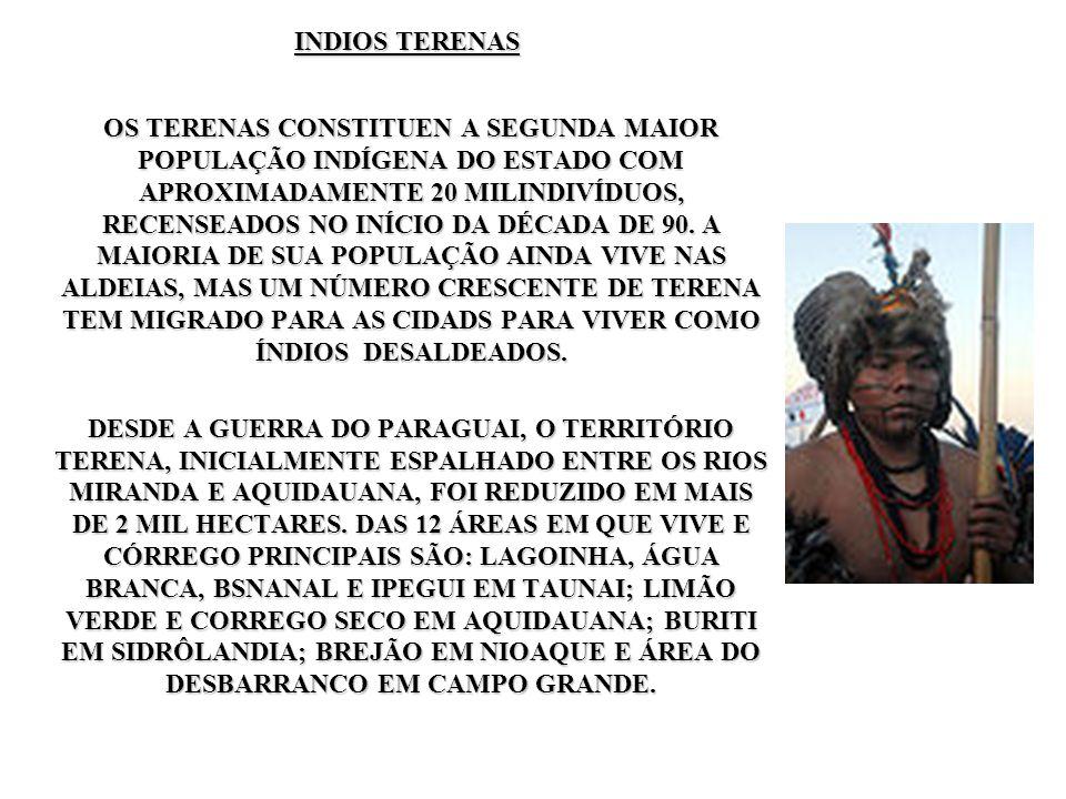 INDIOS TERENAS