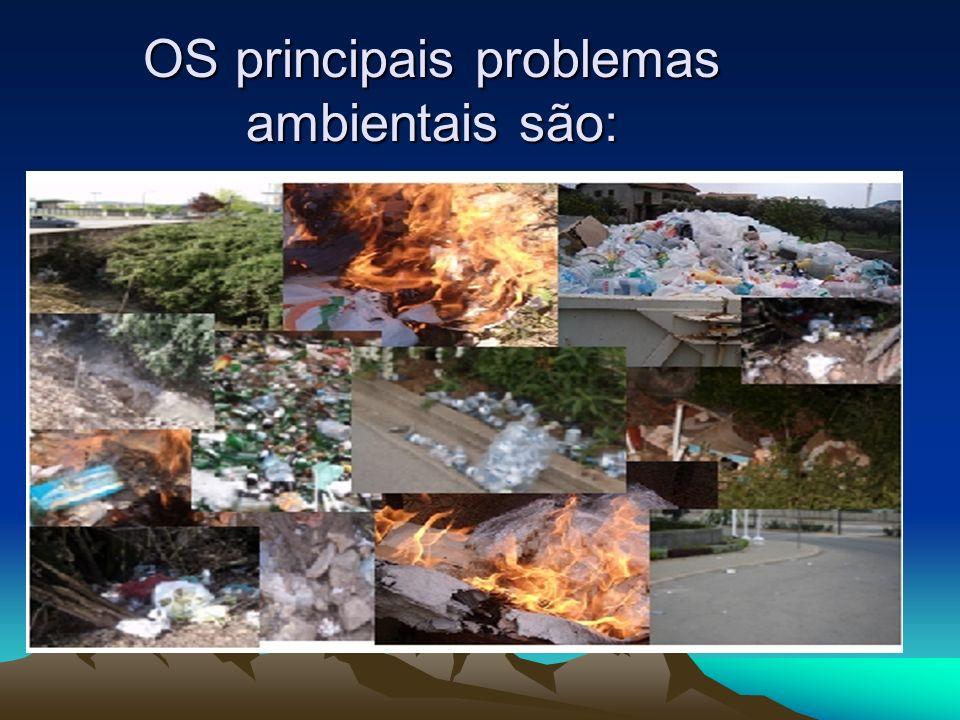 OS principais problemas ambientais são: