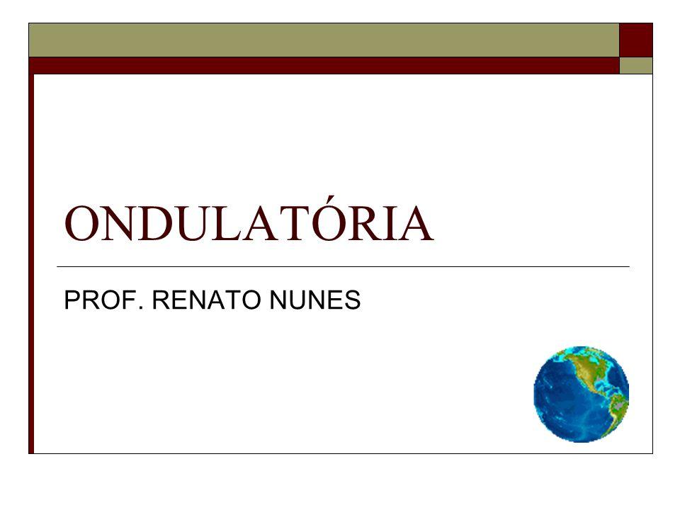 ONDULATÓRIA PROF. RENATO NUNES