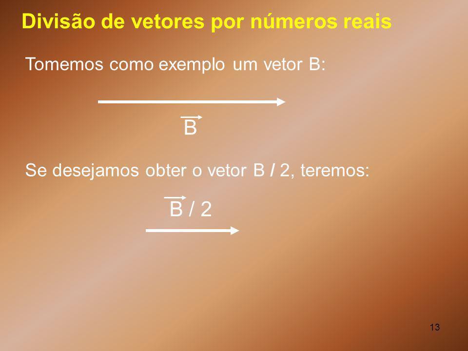 Divisão de vetores por números reais
