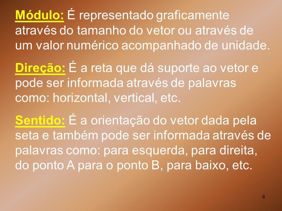 Módulo: É representado graficamente através do tamanho do vetor ou através de um valor numérico acompanhado de unidade.