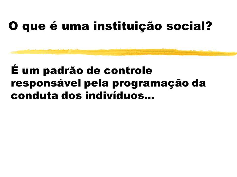 O que é uma instituição social