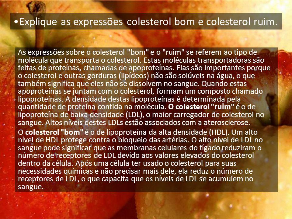 Explique as expressões colesterol bom e colesterol ruim.