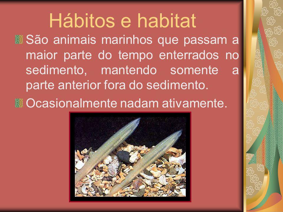 Hábitos e habitat