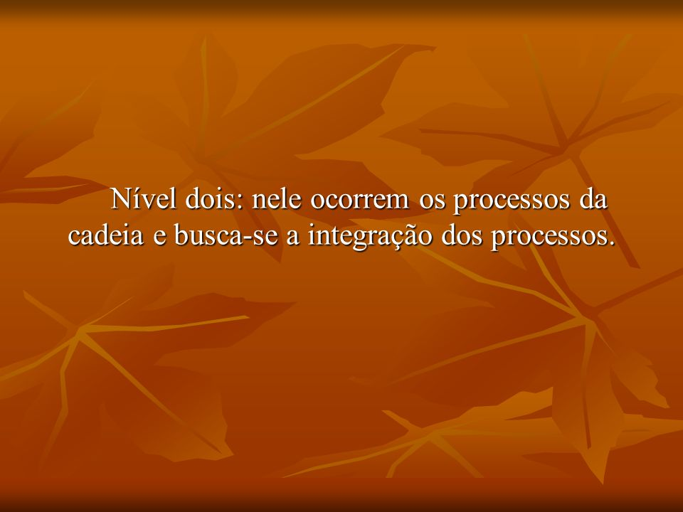 Nível dois: nele ocorrem os processos da cadeia e busca-se a integração dos processos.