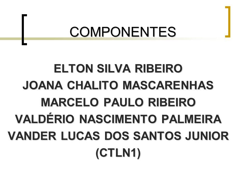 COMPONENTES ELTON SILVA RIBEIRO JOANA CHALITO MASCARENHAS