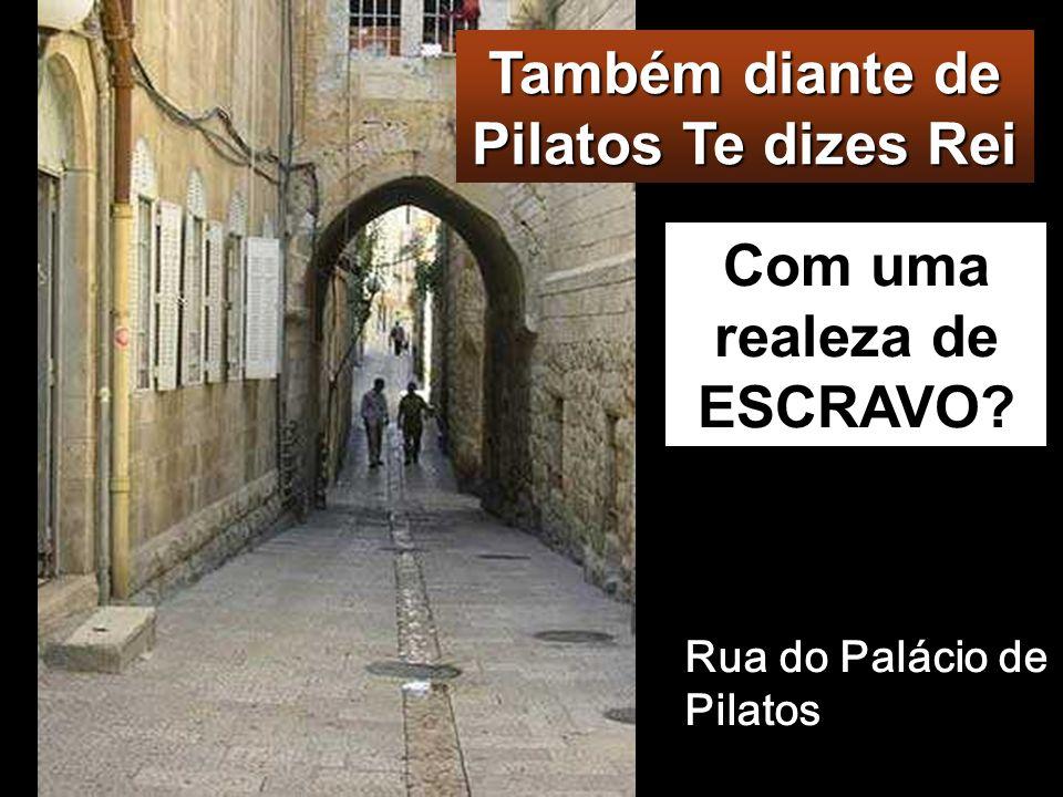 Também diante de Pilatos Te dizes Rei Com uma realeza de ESCRAVO