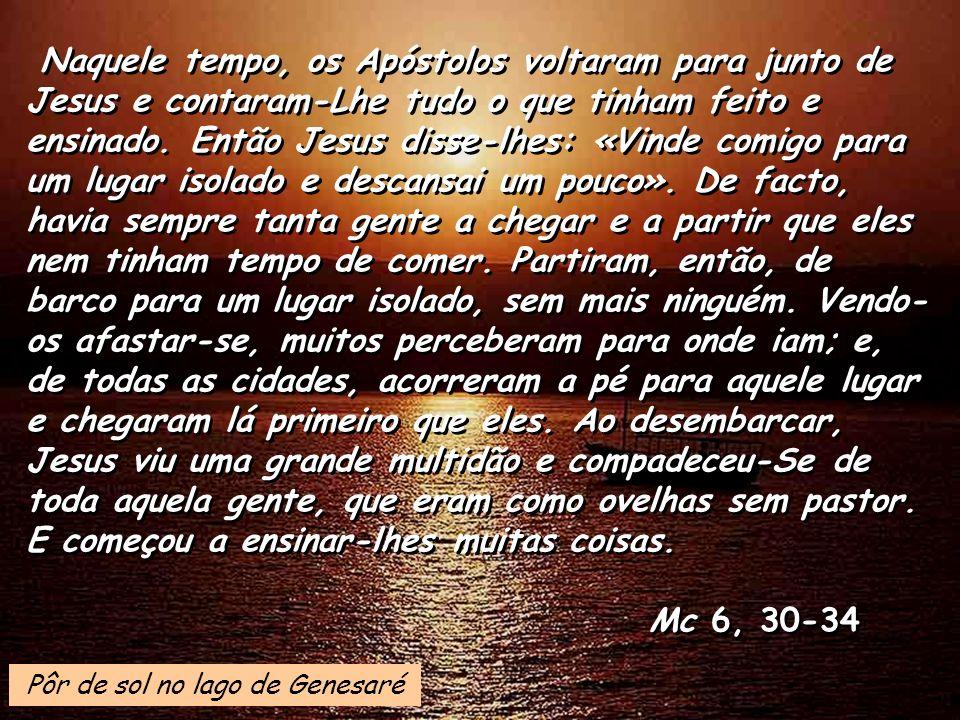 Naquele tempo, os Apóstolos voltaram para junto de Jesus e contaram-Lhe tudo o que tinham feito e ensinado. Então Jesus disse-lhes: «Vinde comigo para um lugar isolado e descansai um pouco». De facto, havia sempre tanta gente a chegar e a partir que eles nem tinham tempo de comer. Partiram, então, de barco para um lugar isolado, sem mais ninguém. Vendo-os afastar-se, muitos perceberam para onde iam; e, de todas as cidades, acorreram a pé para aquele lugar e chegaram lá primeiro que eles. Ao desembarcar, Jesus viu uma grande multidão e compadeceu-Se de toda aquela gente, que eram como ovelhas sem pastor. E começou a ensinar-lhes muitas coisas.