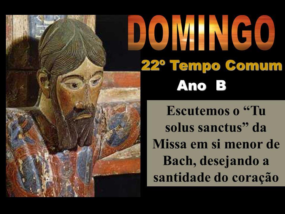 DOMINGO 22º Tempo Comum Ano B