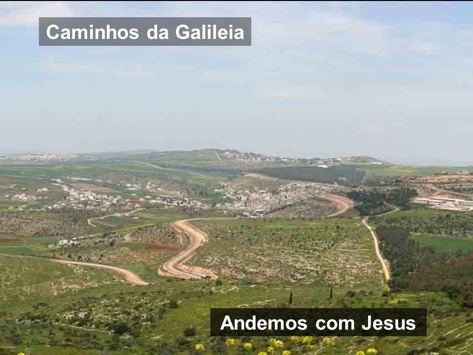 Caminhos da Galileia Andemos com Jesus