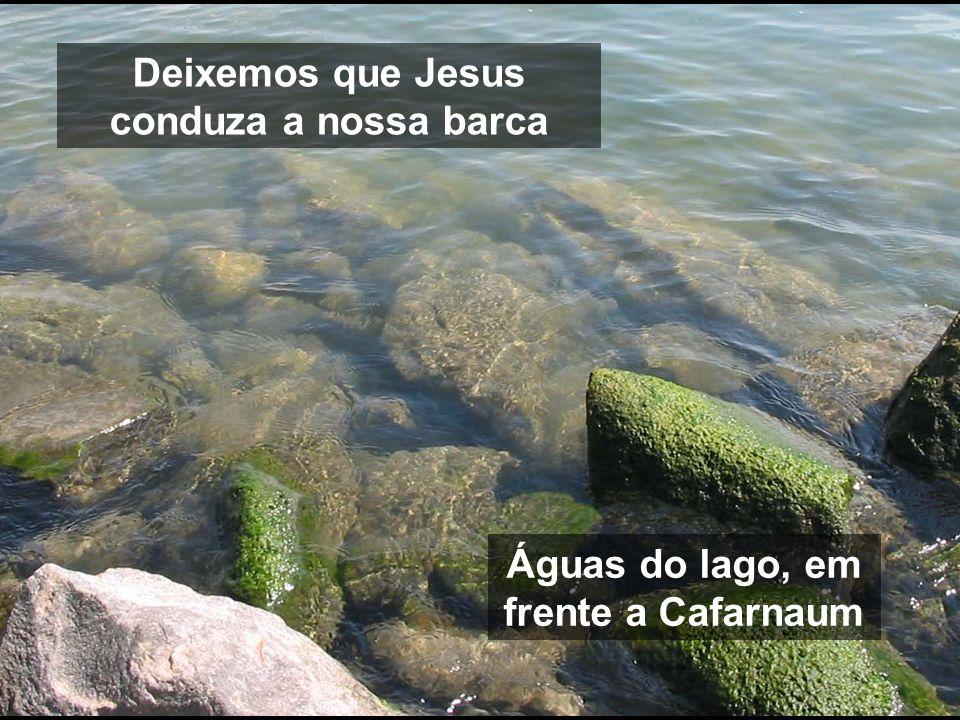 Deixemos que Jesus conduza a nossa barca