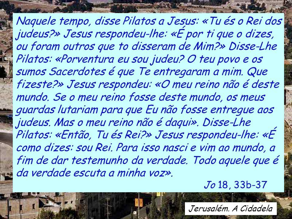 Naquele tempo, disse Pilatos a Jesus: «Tu és o Rei dos