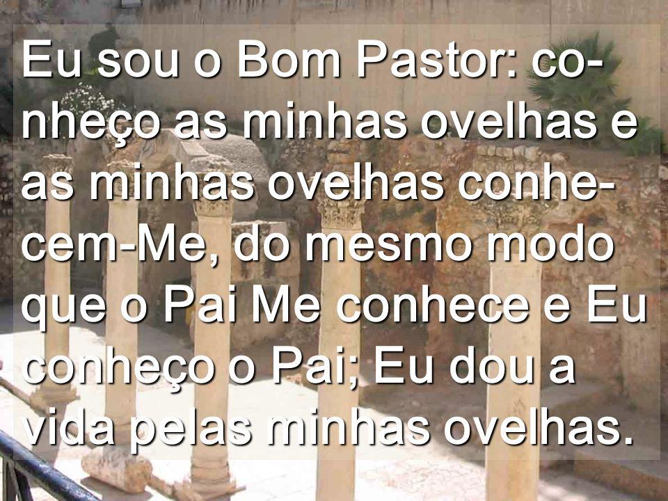 Eu sou o Bom Pastor: co-nheço as minhas ovelhas e as minhas ovelhas conhe-cem-Me, do mesmo modo que o Pai Me conhece e Eu conheço o Pai; Eu dou a vida pelas minhas ovelhas.