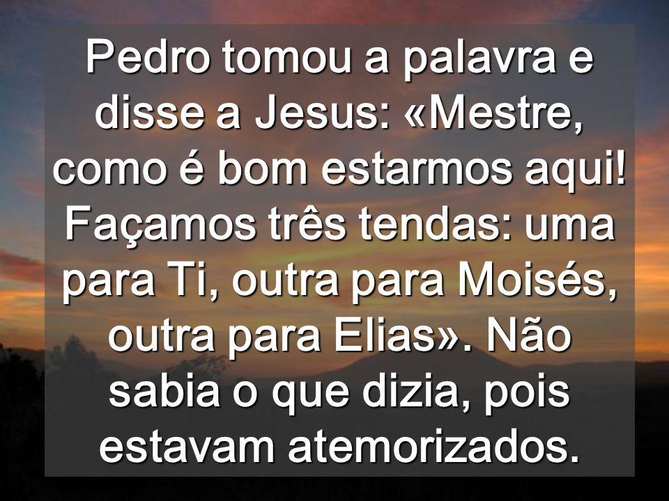 Pedro tomou a palavra e disse a Jesus: «Mestre, como é bom estarmos aqui.