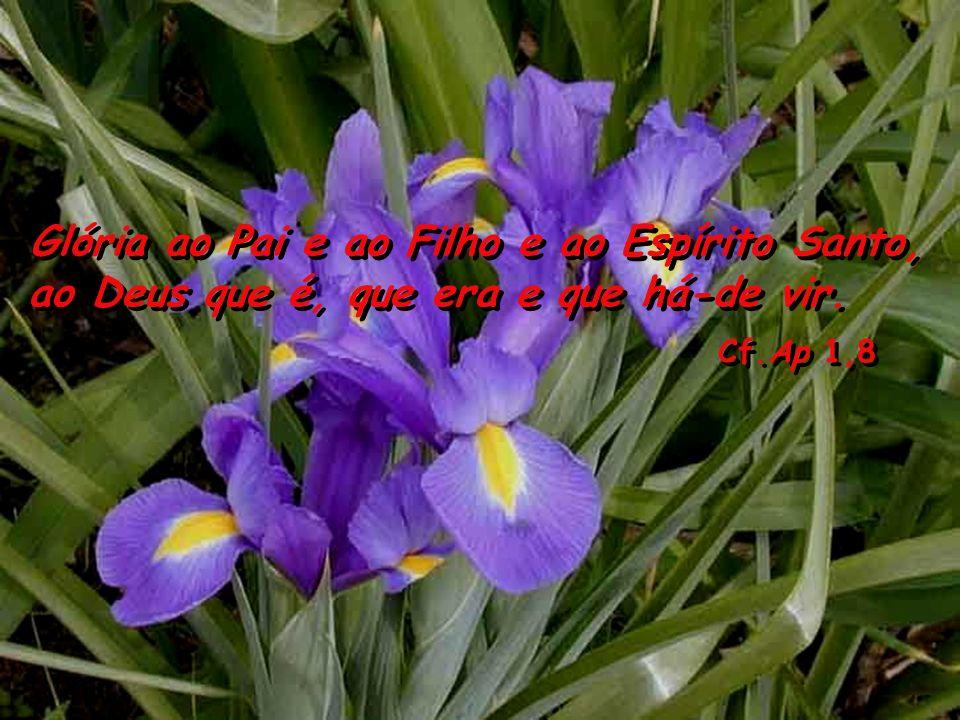 Cf.Ap 1,8 Glória ao Pai e ao Filho e ao Espírito Santo,
