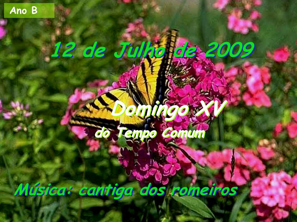 12 de Julho de 2009 Domingo XV do Tempo Comum